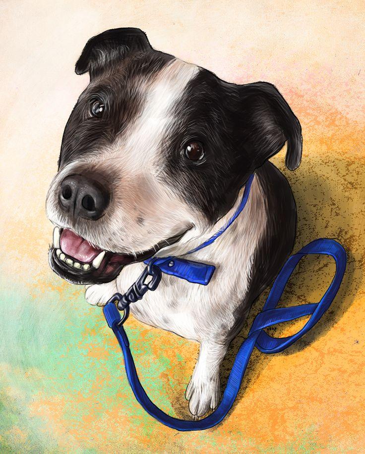 Commissioned portrait of Paco. What a cutie.  Commission info & requests: https://www.etsy.com/au/listing/191989009/custom-pet-portrait-beautiful-digital?ref=shop_home_active_2