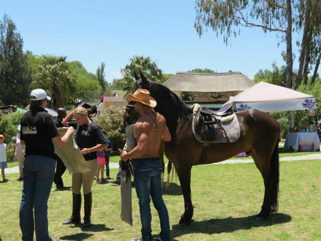 Doing my bit for charity... And horses...