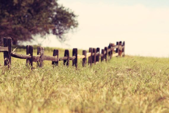 Country Field Fence II