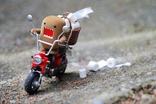 domo on a bike