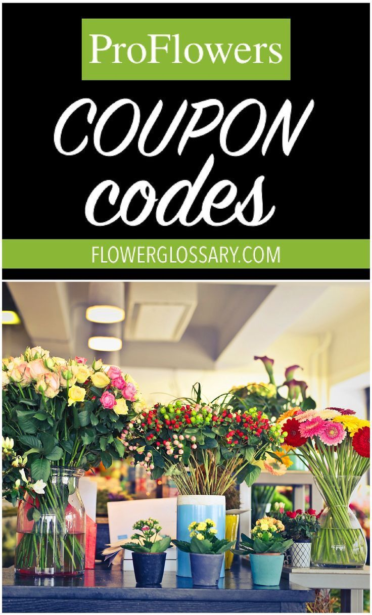 ProFlowers Coupon Codes in 2020 Summer flowers garden