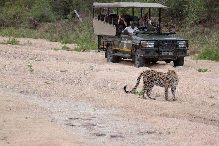Great Wildlife Sightings at Jock in November.