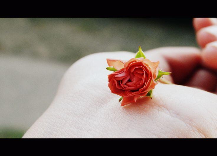 Quiero dejar de sentir tanto sin necesidad de mis cinco sentidos, quiero olvidar lo que siento o lo que creo y creer que no eres para mi.