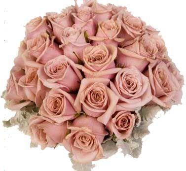 1000 Images About Dusty Rose On Pinterest Mauve
