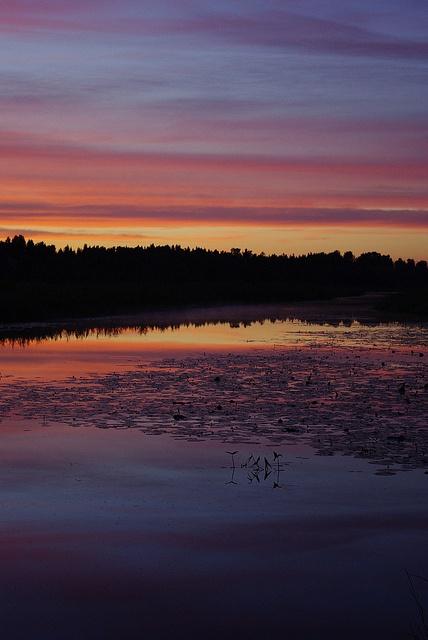 I love Finnish summer.