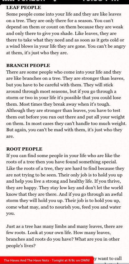 Tree Analogy by Tyler Perry