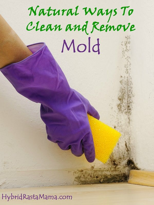 If you have mold in your home, get rid of it before it becomes more of a problem. Here are natural and non-toxic ways to remove it!