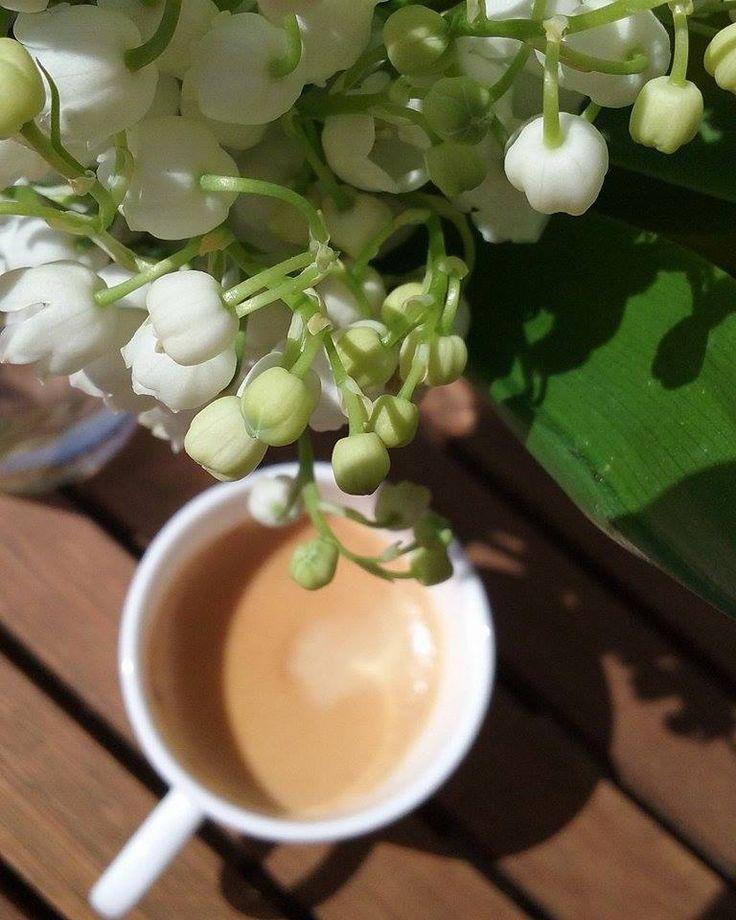 Anyák napi kávém 2016