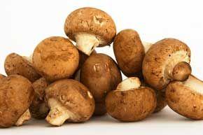 Mushroom Varieties: Button Mushrooms, Crimini Mushrooms, Portobello Mushrooms, Porcini Mushrooms, Shiitake Mushrooms, Maitake Mushrooms, Oyster Mushrooms, Chanterelle Mushrooms