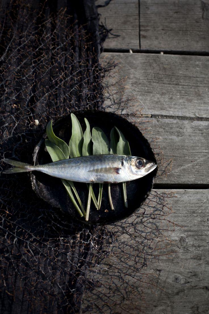 Disposable Seaweed Tableware