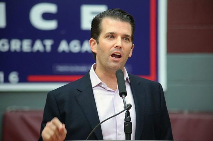 By Marina Troy The latest scandal involving Donald Trump Jr. meeting with a Russian lawyer who claimed to have dirt on Hillary Clinton might be the smoking gun that will take down the administratio…