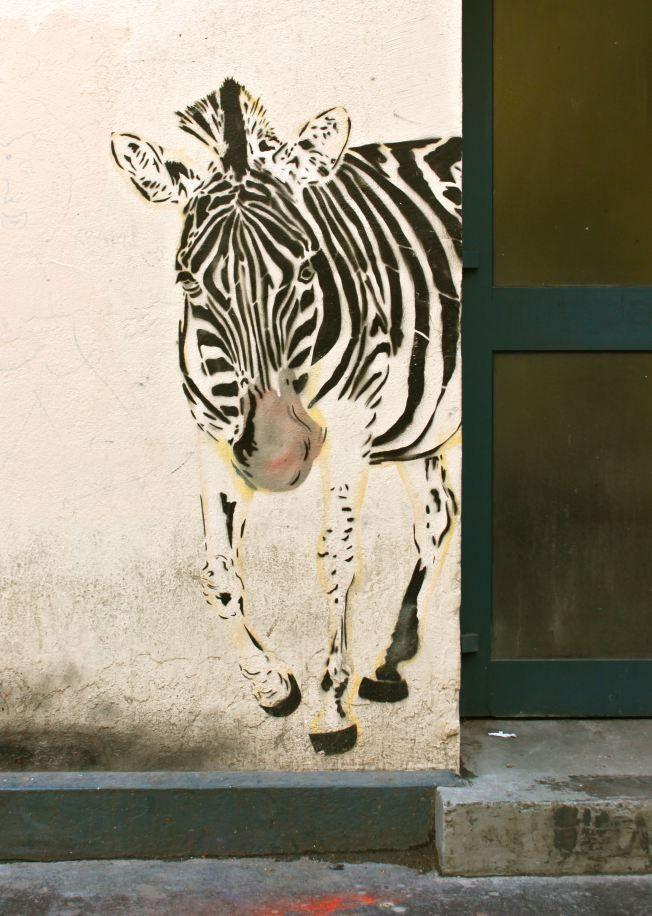 Street art - Mosko et associés - Zèbre - Rue Biot - 75017