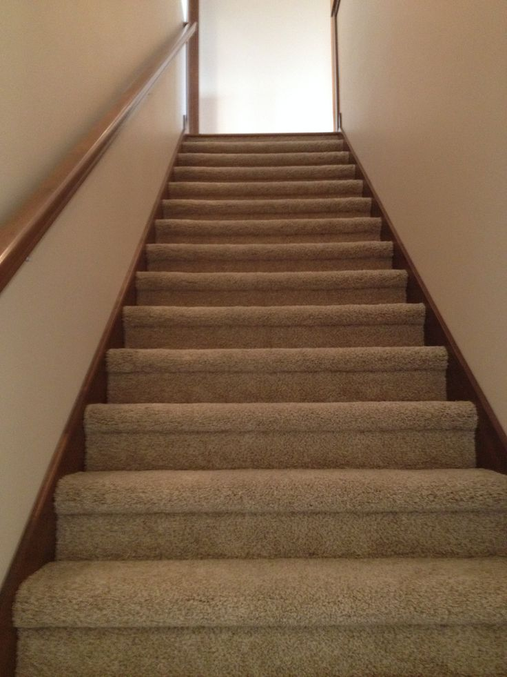 Gerard Homes Super Plush Carpet On Stairs In A Bull Nose