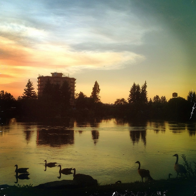 The W Hotel at Sunset | Idaho Falls, ID by TNTizzle, via Flickr