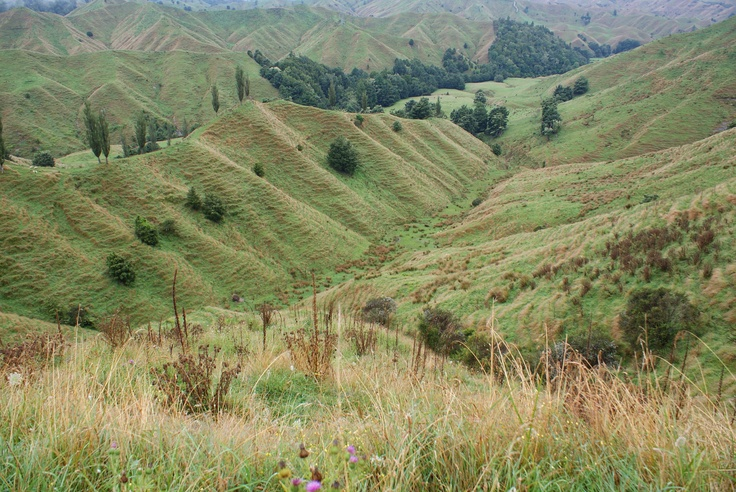 V-Shape Valleys