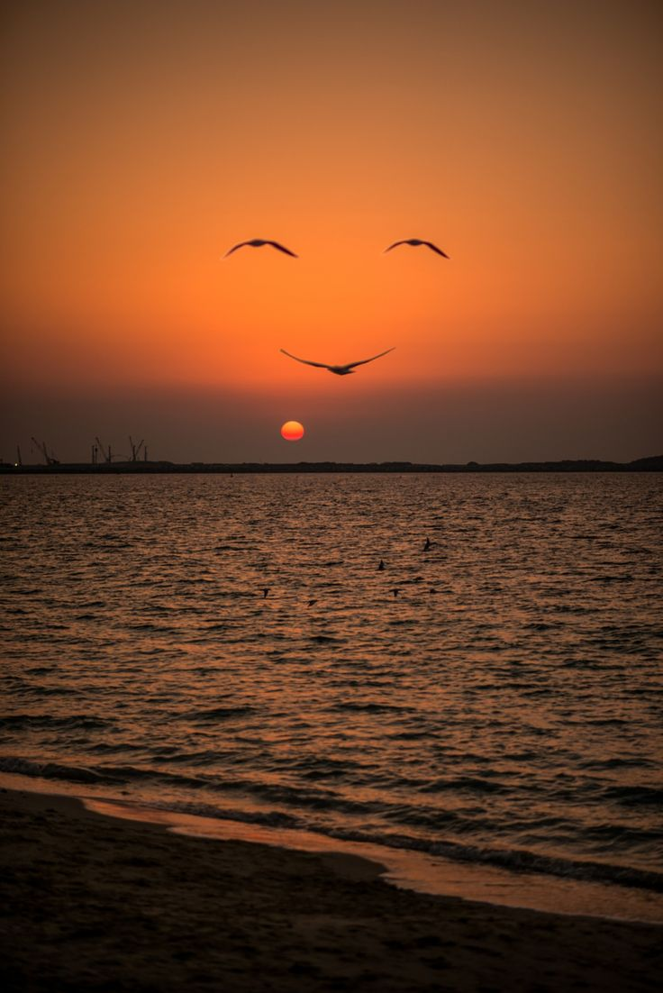 Sunrise in Dubai, talk about being in the right place at the right time. Photograph - Keep positive:) by Shavkat Hoshimov on 500px