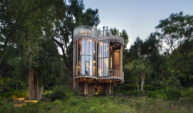 Amazingly design treehouse  forest home in Cape Town, that you have to see!