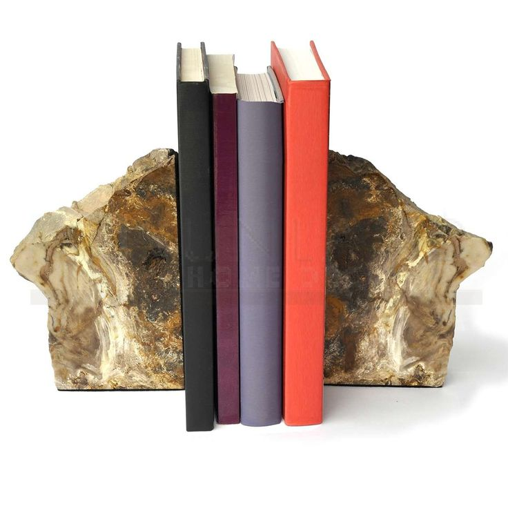 Sunland Home Decor: 7-inch Polished Petrified Wood Bookends