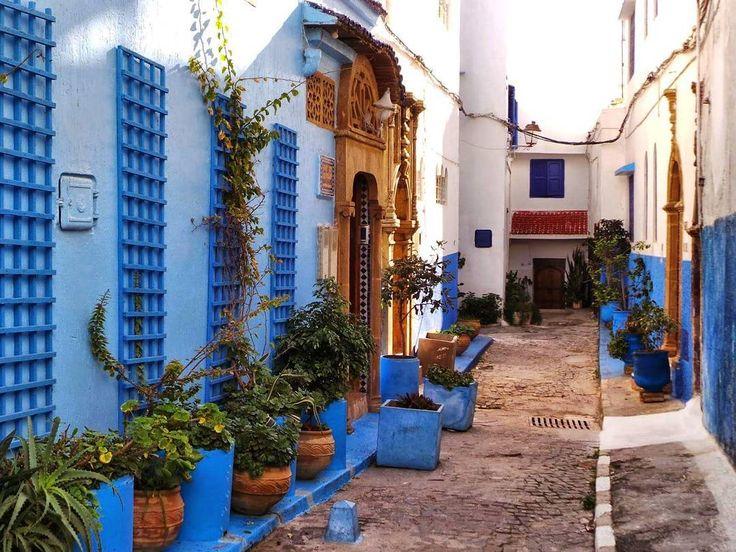 The beautiful narrow alleways of Rabat's Kasbah des Oudayas.  gomarrakechtours@gmail.com  #gomarrakechtours #rabat #kasbah #oudayas #capital #cities #africa #nomad #berber #amazigh #life #travellife #travelgram #instadaily #instatravel #instapassport #traveler #morocco #maroc #marruecos #marrocos #marocco #marokko  Morocco shared group tours  Morocco organized tours  Morocco desert trips