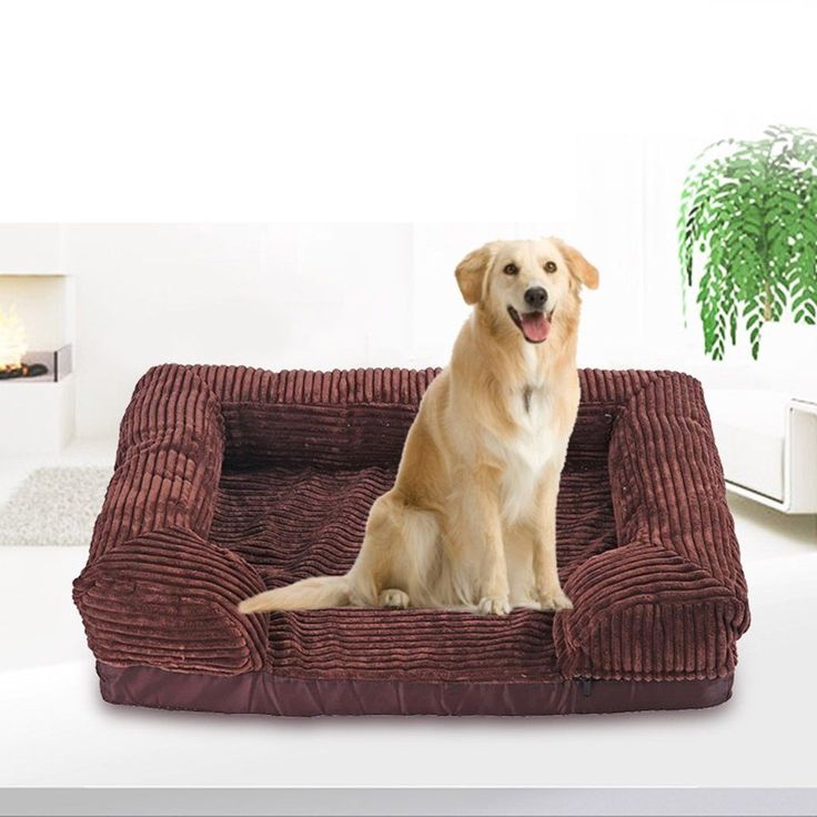Best 25+ Dog couches ideas on Pinterest | Dog couch cover ...