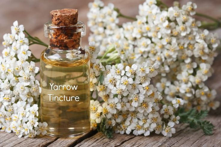 Yarrow tincture is very effective as a broad spectrum insect repellent (ticks too), is easy to make and has a reputation for being stronger than DEET although you need to reapply more often.  http://www.thehealthyhomeeconomist.com/yarrow-insect-repelling-herb-stronger-than-deet/