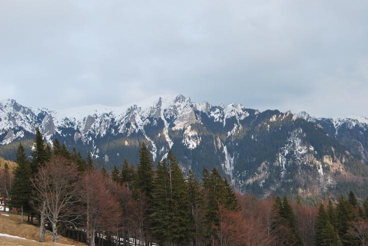 """Muntele Rece"" zone, Carpathian Mountains of Romania, wild, beautiful, unspoiled."