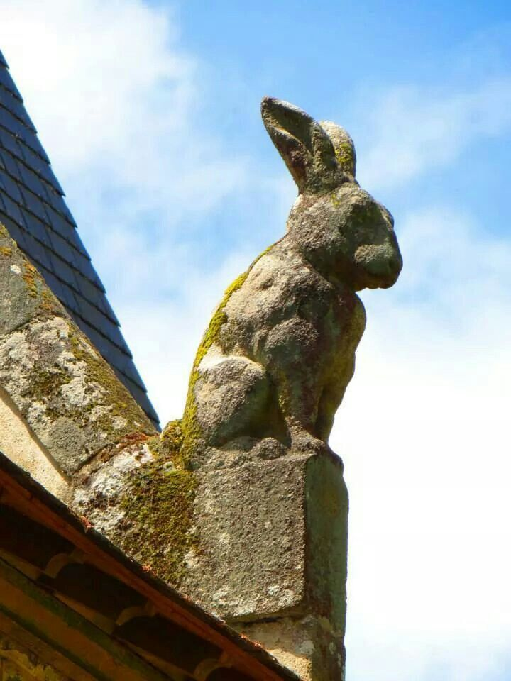 Gargoyle bunny - Gotta do this!