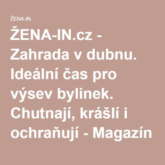 ŽENA-IN.cz - Zahrada vdubnu. Ideální čas pro výsev bylinek. Chutnají, krášlí i ochraňují - Magazín