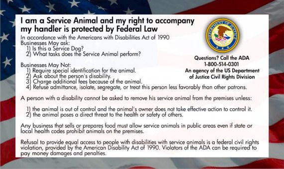 Legal Rights to the Uninformed with ADA Service Dog Cards .For more information visit on this website https://servicedogattire.com/product/service-dog-cards/