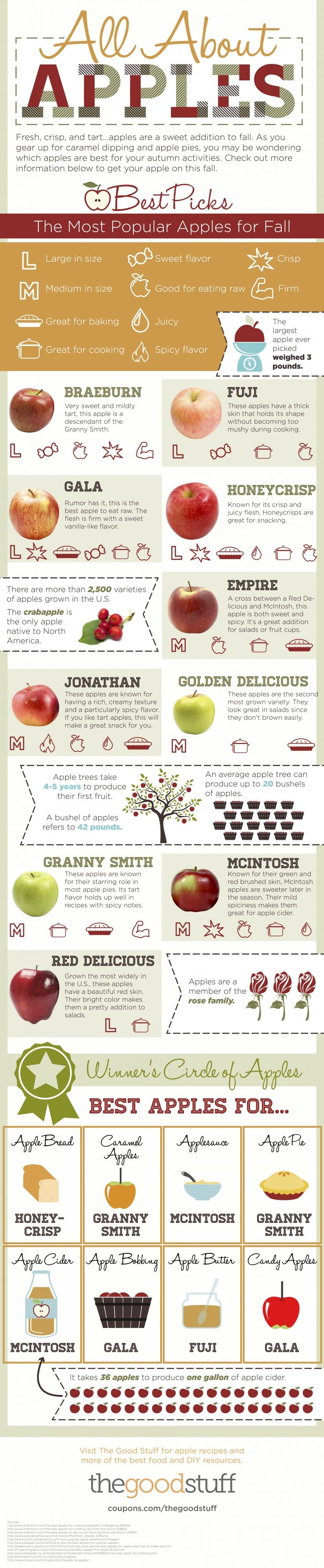 All About Apples #foodfacts