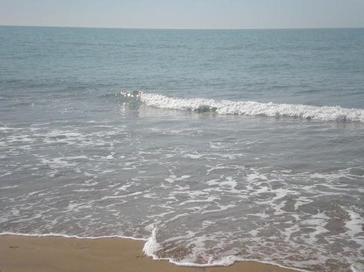 Acqua pura e pulita nel nostro splendido mare di Bibione