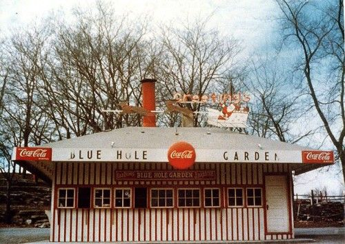 Blue Hole Garden 500x354 Blue Hole BBQ Sauce I used to get a chopped barbecue on toast for Coach Milligan at Central High School.  It was from the Blue Hole on Kingshighway.