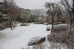 * 새하얀 눈으로 덮인 서울파트너스하우스의 겨울