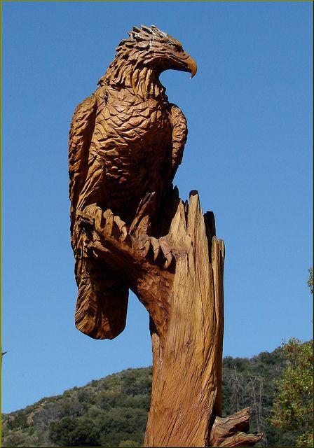 Wood Carving, Eagle, Oak Glen, CA 4-27   Flickr - Photo Sharing!