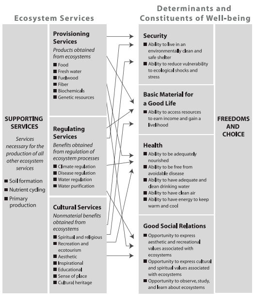 Figure 1: Ecosystem Services and Their Links to Human Well-being