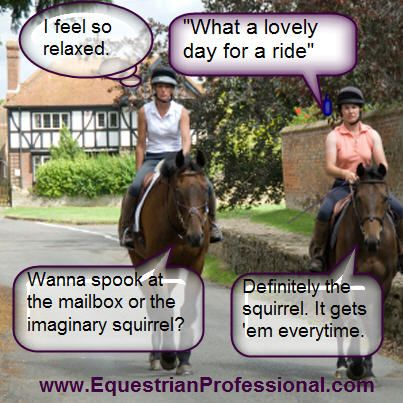My horse does this EVERY DAY!!! 'Oh no, look at that... CHAIR. It looks very suspicious.'