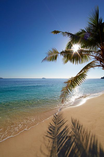 Tropical beach, Fiji Islands.