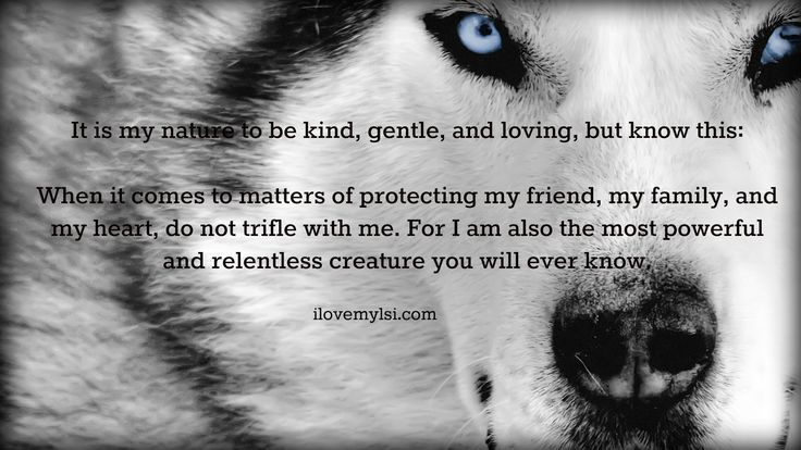 It's in my nature to be kind, gentle, and loving, but know this:  When it comes to matters of protecting my friend, my family, and my heart, do not trifle with me.  For I am also the most powerful and relentless creature you will ever know.