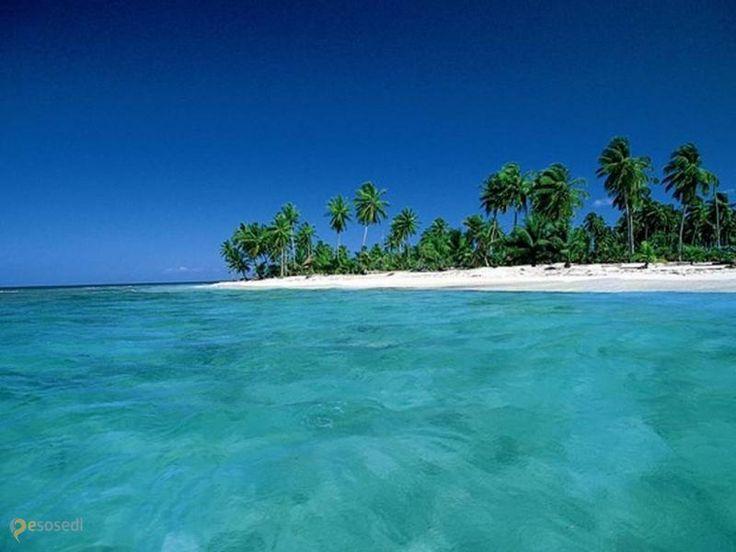 Остров Саона – #Доминиканская_республика (#DO) Теплое Карибское море, солнце, пальмы и белый песок пляжей острова Саона - а что еще нужно для полной релаксации?! http://ru.esosedi.org/DO/places/1000100855/ostrov_saona/