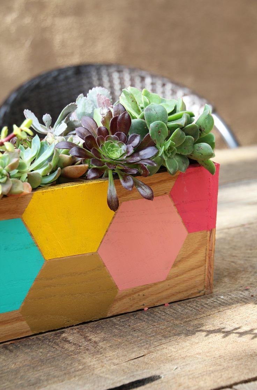 DIY Succulent Hexagon Planter Box.
