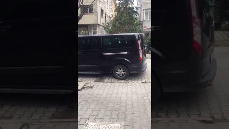 2017 03 19 VIDEO 00004159