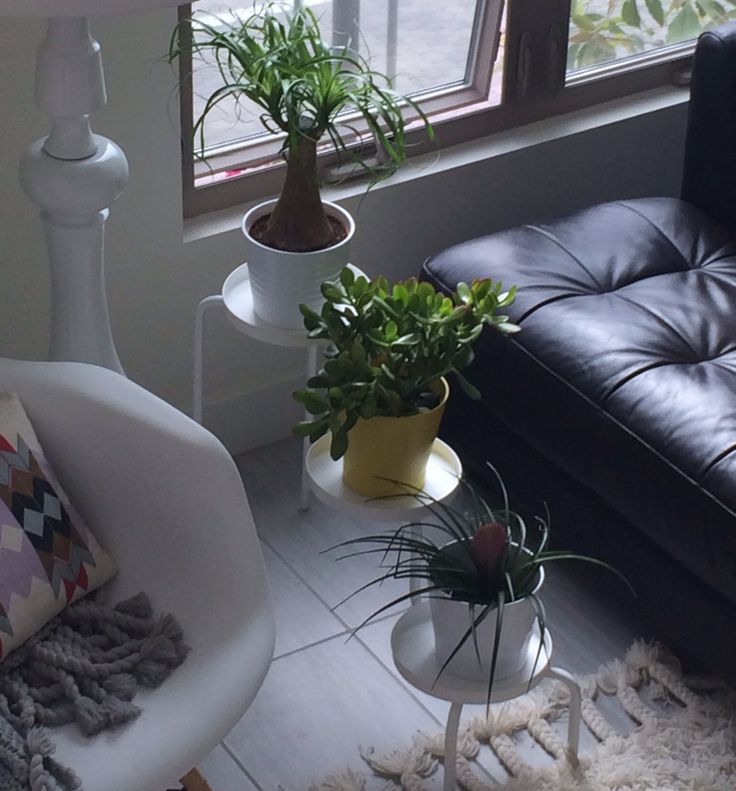 Ikea PS 2014 Plant Stand 15