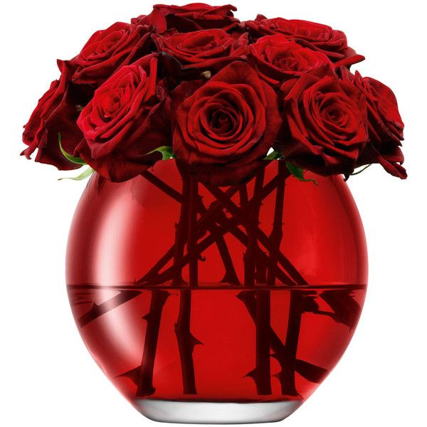 LSA MILO VASE 16cm RED ($50) ❤ liked on Polyvore featuring home, home decor, flowers, decor, plants, backgrounds, lsa international, red home decor and red home accessories