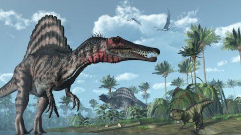Un grupo de ingenieros e investigadores de la Paleobiology Database (base de datos más grande disponible en línea de descubrimientos de paleontología) ha creado un mapa interactivo que recopila absolutamente todos los fósiles encontrados en el mundo. ¿Quieres saber qué han encontrado en tu ciudad?