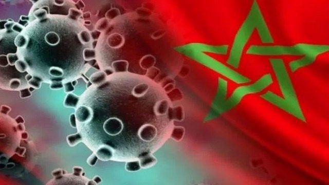 تقرير المغرب هو البلد الوحيد من بين دول شمال إفريقيا الذي تحكم بشكل أفضل في أزمة تفشي وباء كورونا Christmas Ornaments Novelty Christmas Holiday Decor