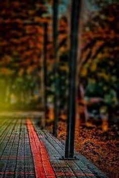 Image Dresult For Cb Edit Background Hd D