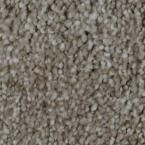 Carpet Sample - Gemstone II - Color Radiant Texture 8 in. x 8 in.