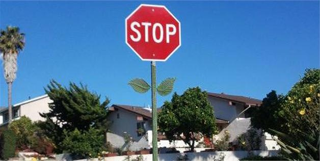Stop sign with leaves & a stem (© HipsOfAViolin via Reddit)
