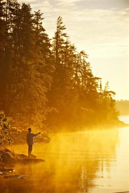 Things to do in Minnesota's North Woods include Voyageurs National Park, Boundary Waters Canoe Area Wilderness, North American Bear Center and Soudan Underground Mine State Park.