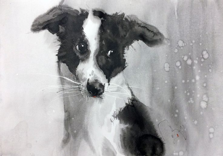 Maysa 2 / dog / watercolor / #Petrulenkov